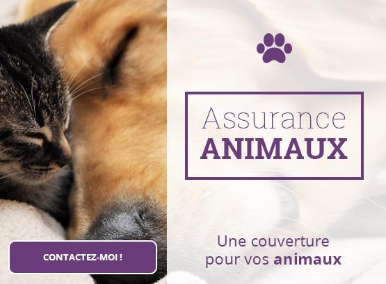 gielis_animaux